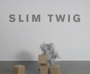 slimtwig-alteredego-290x239