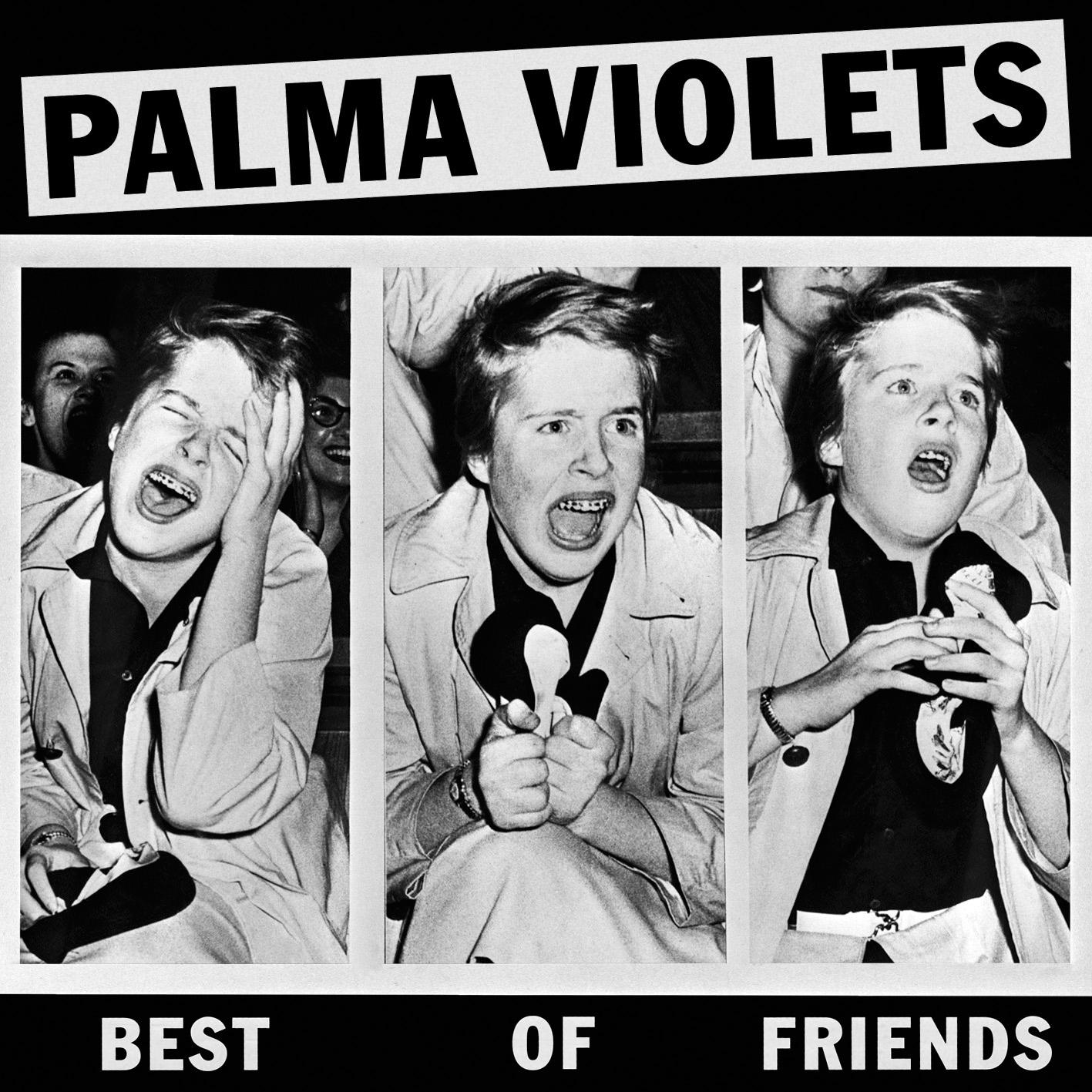 palma violets best of friends