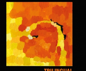 "Northern Transmissions reviews ""Trilngual"" by Trails And Ways"