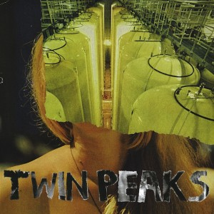 Twin Peaks reviewed by Northern Transmissions, available July 9 on Autumn Tone