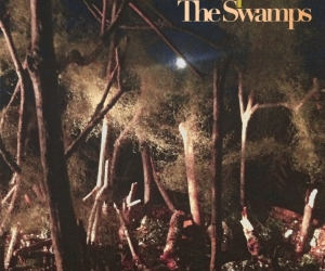 "Widowspeak' ""The Swamps"" reviewed by Northern Transmissions. The album comes Out October 29th on Captured Tracks."