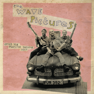Review of the new LP from The Wave Pictures 'Great Flamingo Burning Moon,'