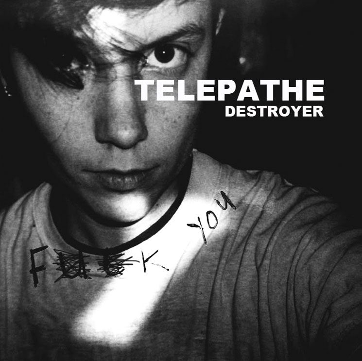 Review of 'Destroyer' by Los Angeles band Telepathe, the album comes out on August 7th via BZML