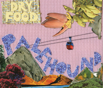 Review of the forthcoming release 'Dry Food' by Palehound