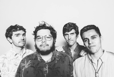 "Dante Elephante share the video for their track ""Never trust a junkie"""