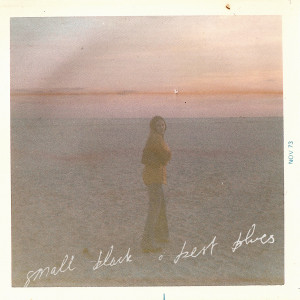 Review of 'Best Blues' the new full length from Small Black.