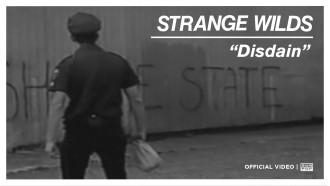 """""""Disdain"""" by Strange Wilds"""