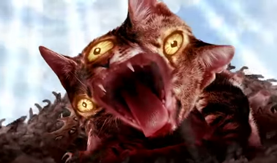 "Run The Jewels release ""Meowpurdy"" video. The track comes off 'Meow The Jewels"