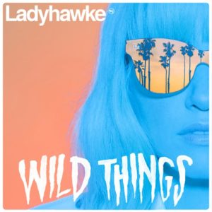 "Northern Transmissions' 'Video of the Day' is ""Wild Things"" by Ladyhawke"