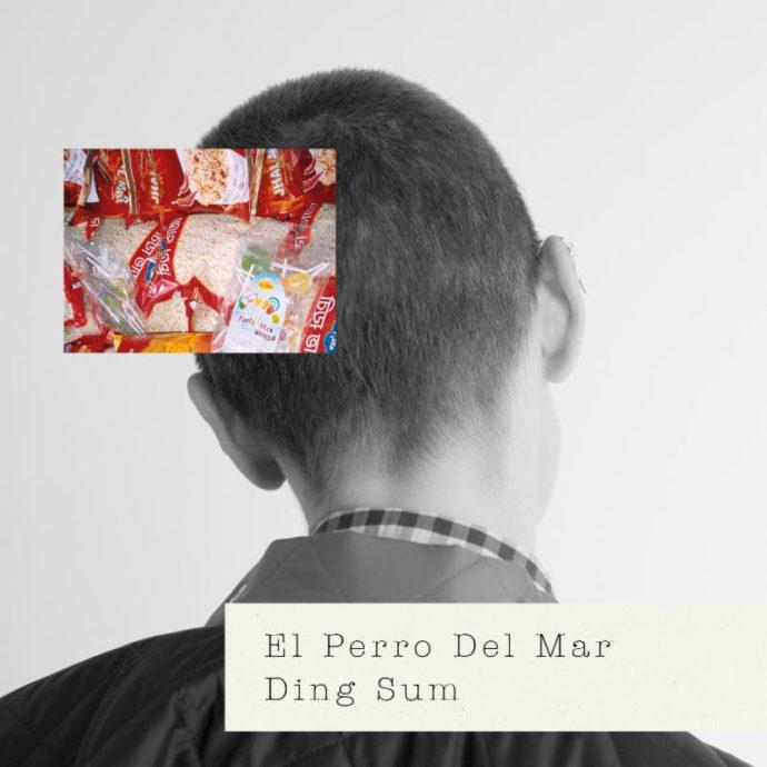 "El Perro Del Mar debut new single ""Ding Sum""."