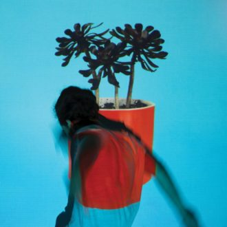 'Sunlit Youth' by Local Natives, review by Gregory Adams. The full-length comes out on September 9th on Loma Vista
