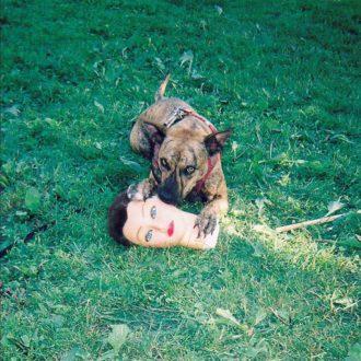 'Cody' by Joyce Manor, album review by Gregory Adams
