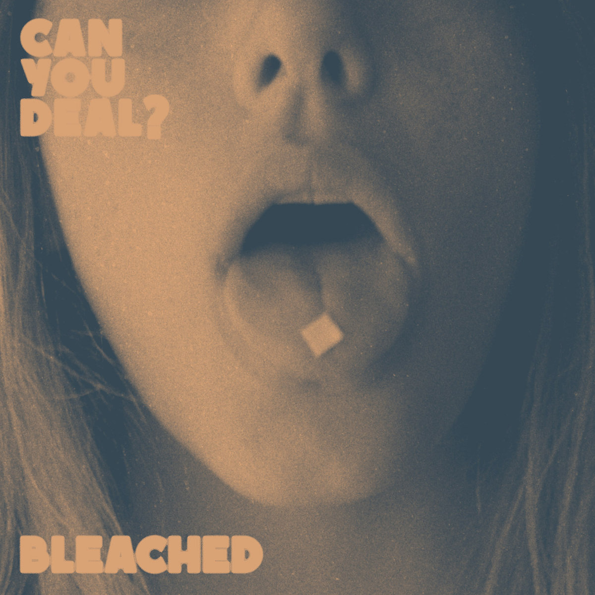 'Can You Deal?' by Bleached, album review by Adam Williams.