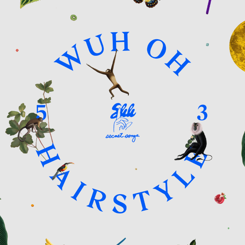 WuhOhHairstyle