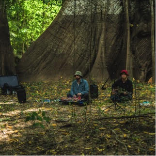 """Animal Collective Announce """"Meeting of the Waters"""" EP, out Record Store Day April 22nd."""
