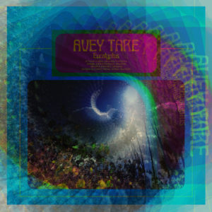 Our review of Avey Tare's 'Eucalyptus'