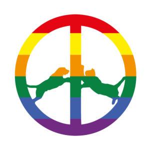Hype Williams announces new album 'Rainbow Edition'
