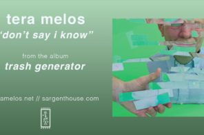 """Don't Say I Know"" by Tera Melos"