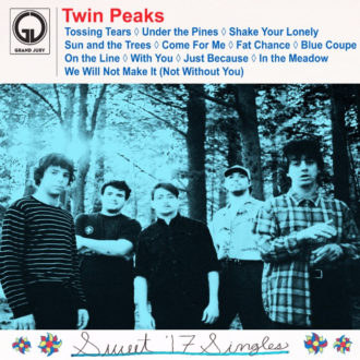 "Twin Peaks release two new singles ""In The Meadow"" and ""We Will Not Make It (Not Without You)"""