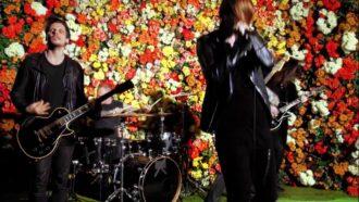 """""""Flowers Under Siege"""" by American Nightmare"""
