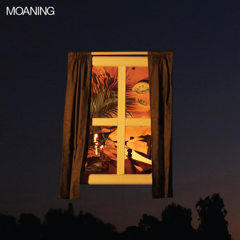 'Moaning' by Moaning album review for Northern Transmissions, by Adam Williams.