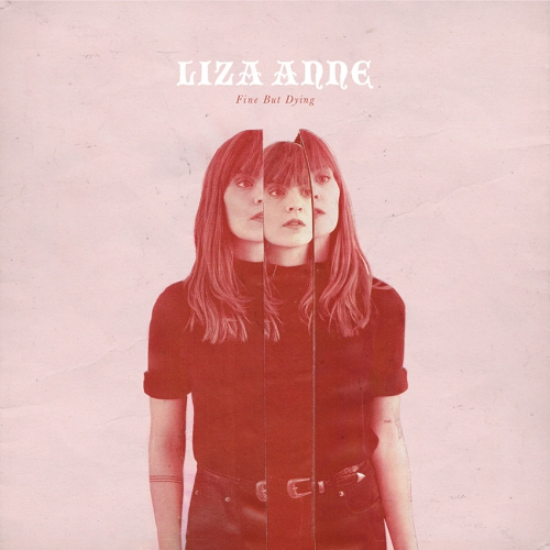 Northern Transmissions review of 'Fine But Dying' by Liza Anne