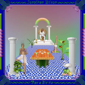 """Jonathan Wilson releases """"There's A Light"""" video"""