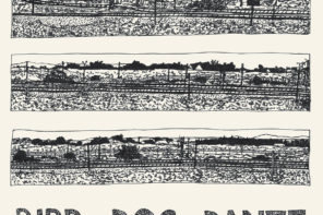 John Parish Bird Dog Dante Review For Northern Transmissions