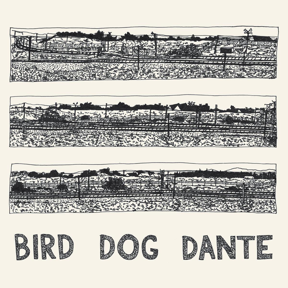 John Parish Bird Dog Dante Review For Northern Transmissions