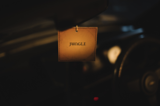 Jungle announce new full-length 'For Ever'