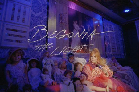 """""""The Light"""" Begonia is Northern Transmissions' 'Video of the Day'."""