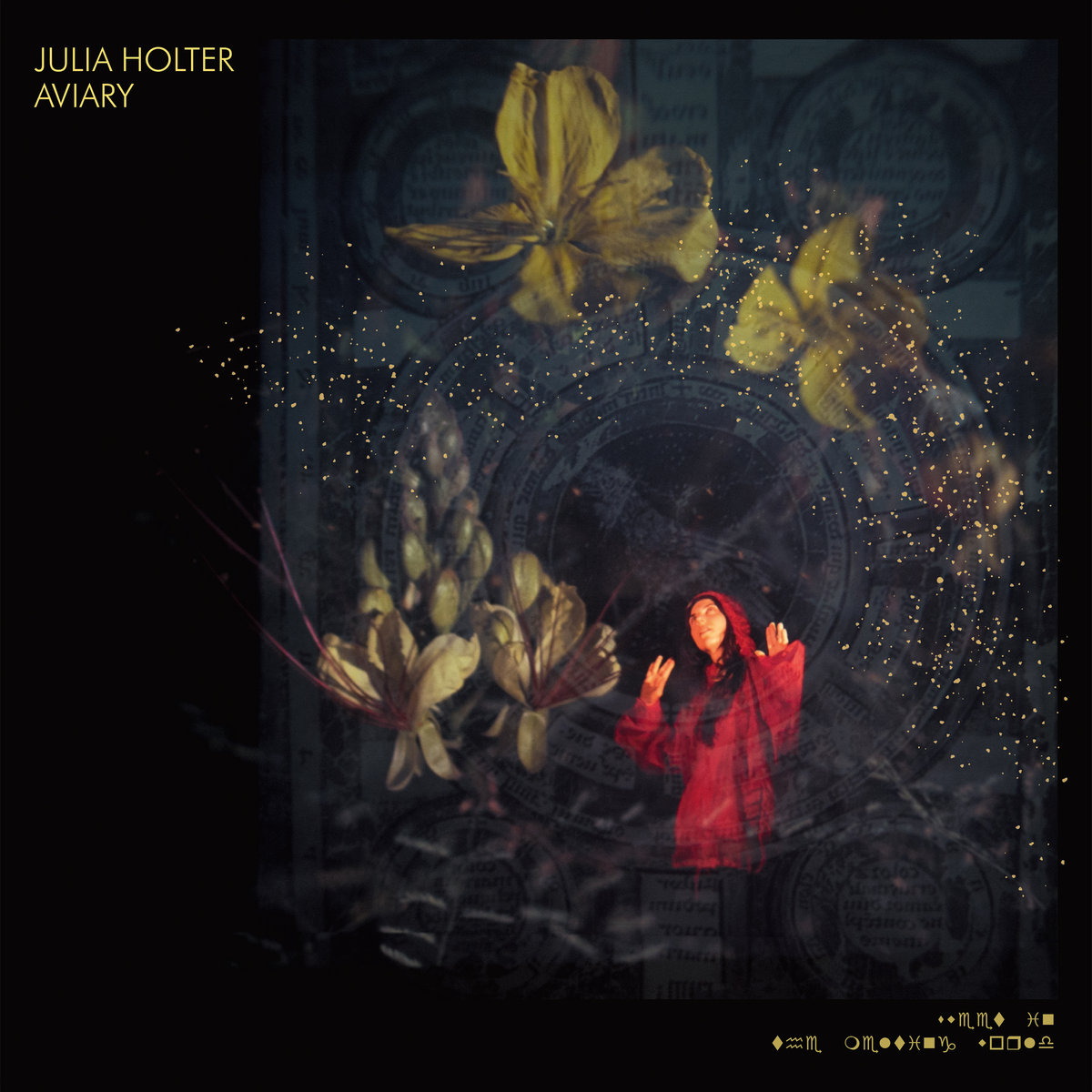 Julia Holter Aviary Review For Northern Transmissions
