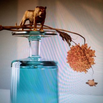 Beirut 'Gallipoli' Review For Northern Transmissions