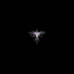 'Lux Prima' by Karen O and Danger Mouse, album review for Northern Transmissions by Adam Williams