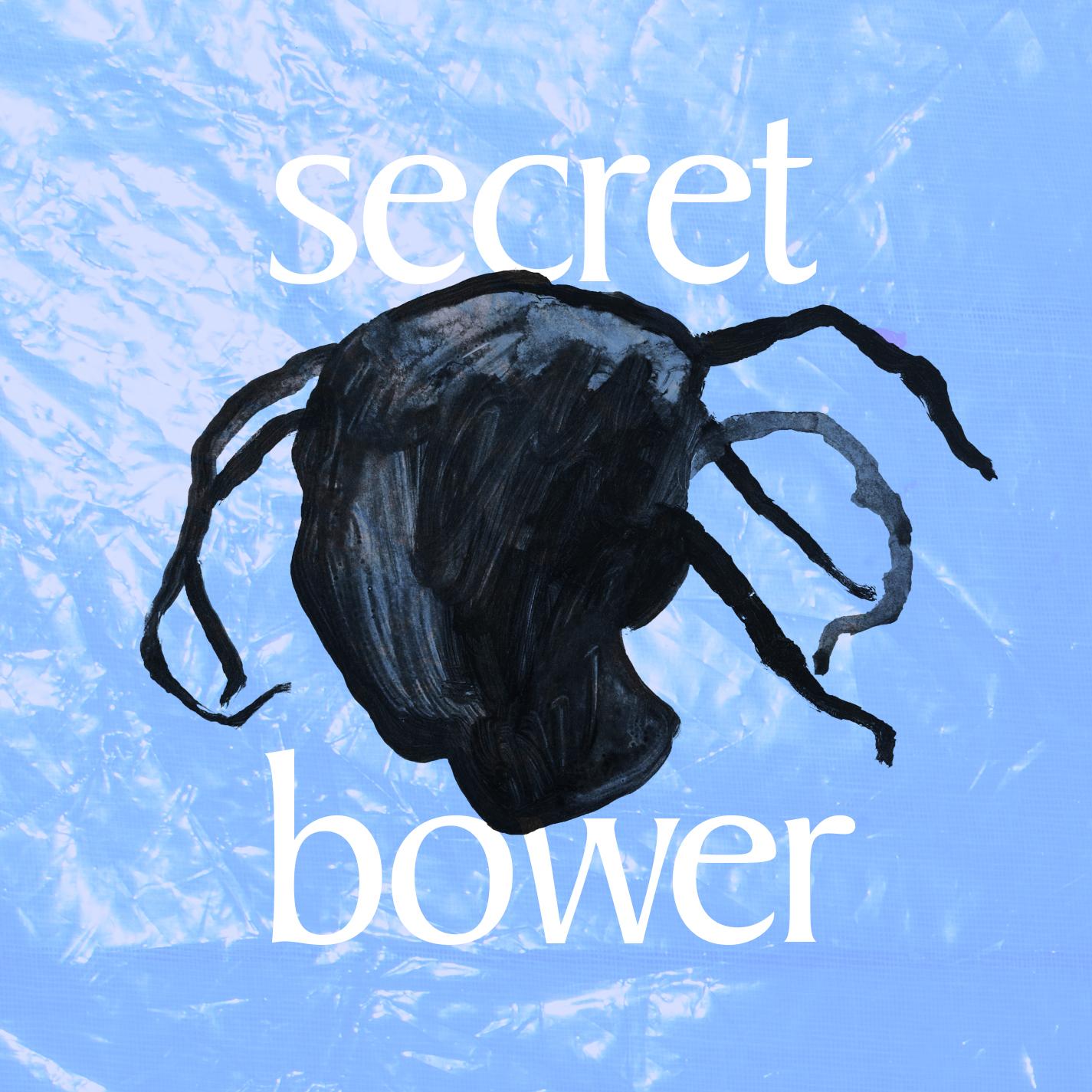 "Nora Shikoswe Hougsnæs, aka Shikoswe, has released her new single ""Secret Bowser"""