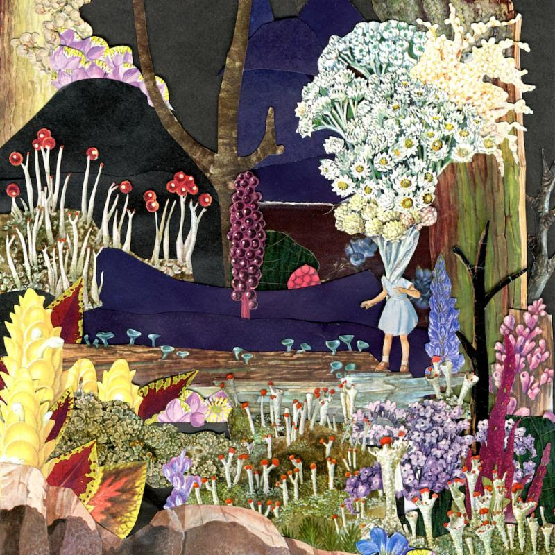 And Now What For The Whatchamacallit', by Psychedelic Porn Crumpets
