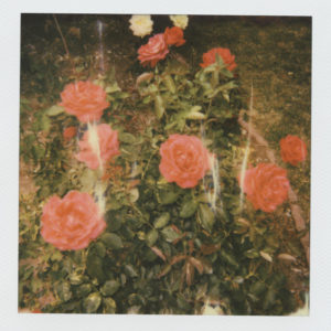 Album review of 'Chapter 2' by girl in red
