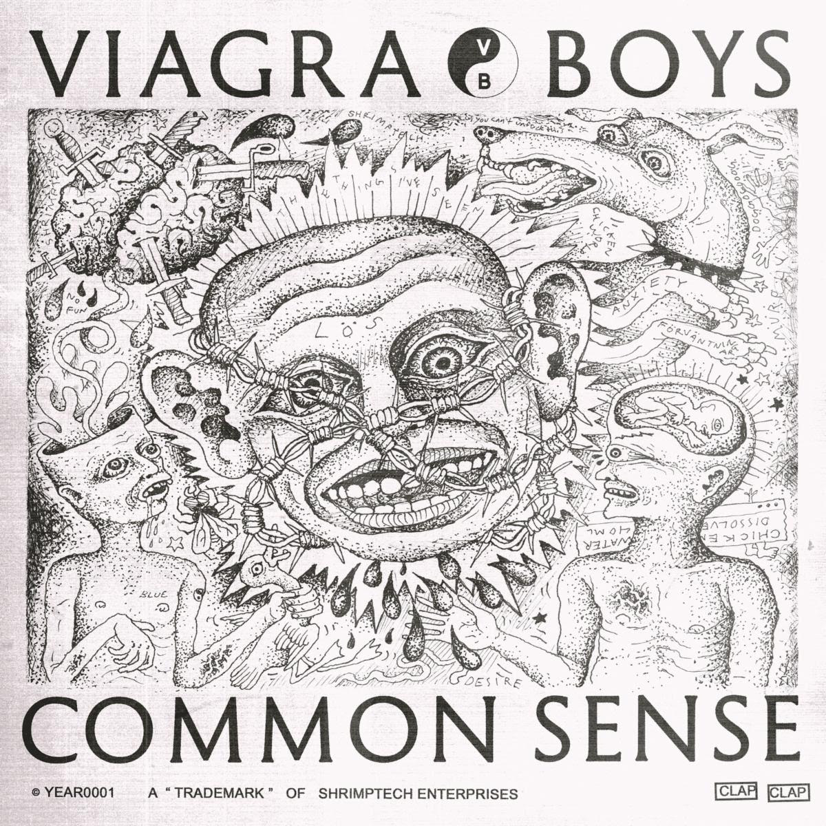 Common Sense by V**gra Boys album review by Leslie Chu for Northern Transmissions