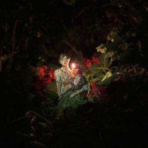 "Helena Deland, releases new single ""Lylz"""