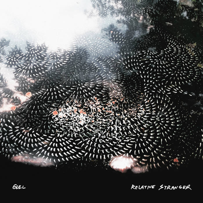 Gull streams forthcoming release Relative Stranger. The LP was recorded, mixed/produced mastered by Cyrus Fisher and drops 8/21 via Lagom Audio/Visual