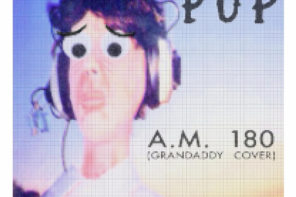 "Pup Cover ""A.M. 180"" Grandaddy"