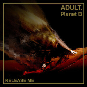 """Release Me"" by ADULT. & Planet B is Northern Transmissions Song of the Day"