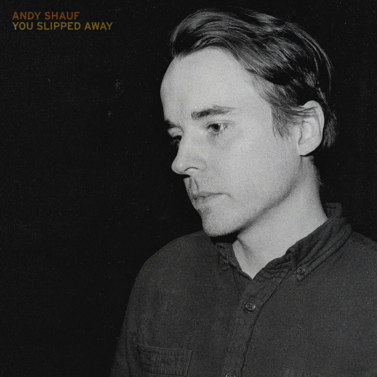 """Andy Shauf Drops New Single """"You Slipped Away."""" The track is off the singer/songwriter's current release The Neon Skyline"""