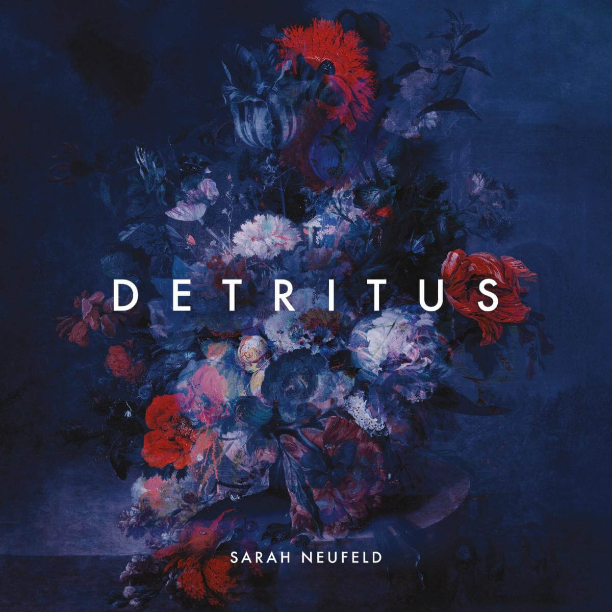 """""""Stories"""" by Sarah Neufeld is Northern Transmissions Song of the Day. The track is off the artist's LP Detritus out May 14 via Paper Bag"""