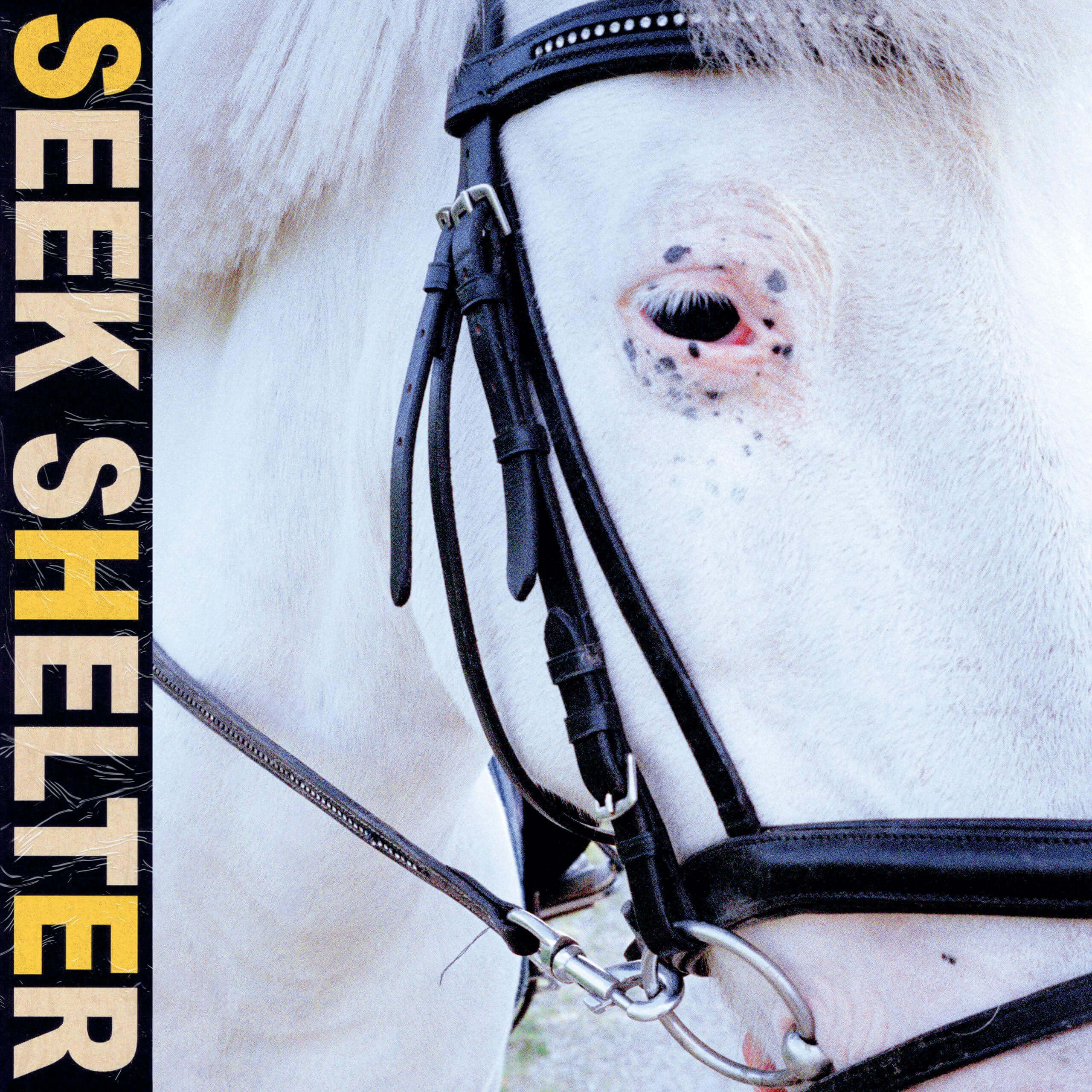 Seek Shelter by Iceage album review by Jahmeel Russell for Northern Transmissions