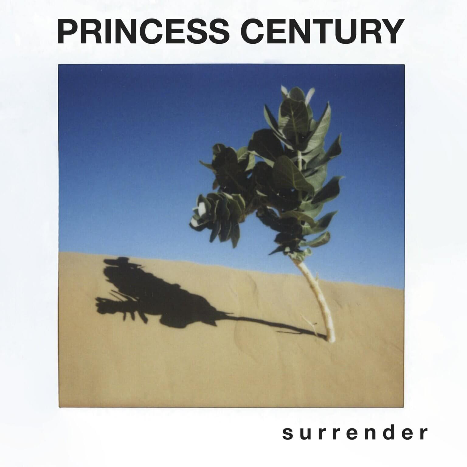 """PRINCESS CENTURY releases """"Stupid Things"""" video"""